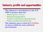 industry profile and opportunities15