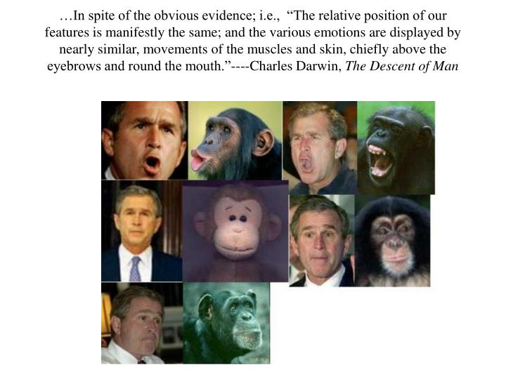 """…In spite of the obvious evidence; i.e.,  """"The relative position of our features is manifestly t..."""