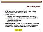 pilot projects30