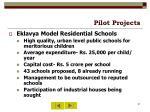 pilot projects31