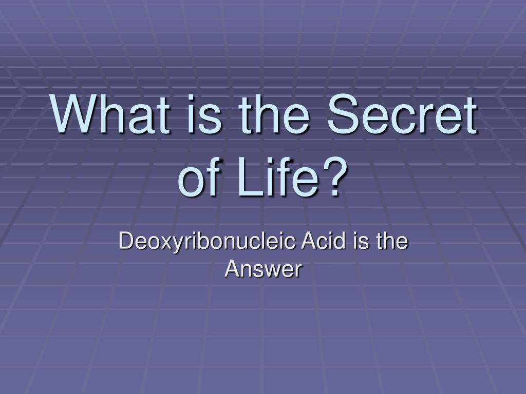 what is the secret of life l.