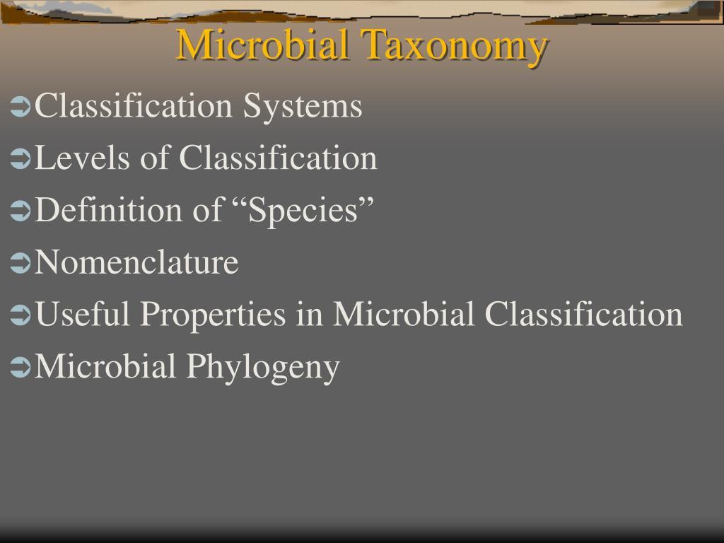 microbial taxonomy l.