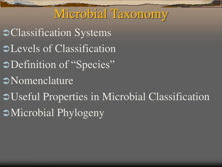 microbial taxonomy n.