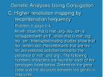 genetic analyses using conjugation18