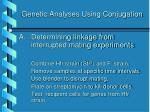 genetic analyses using conjugation9