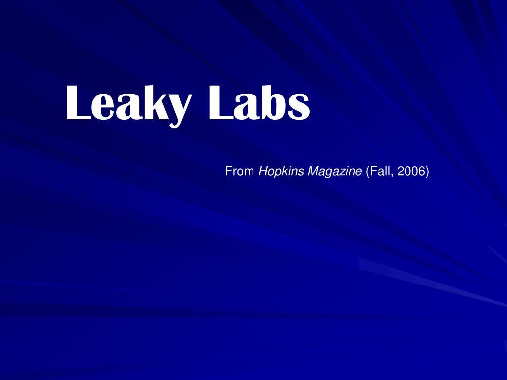 Leaky Labs