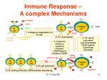 immune response a complex mechanisms