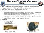 modular airborne weapons case