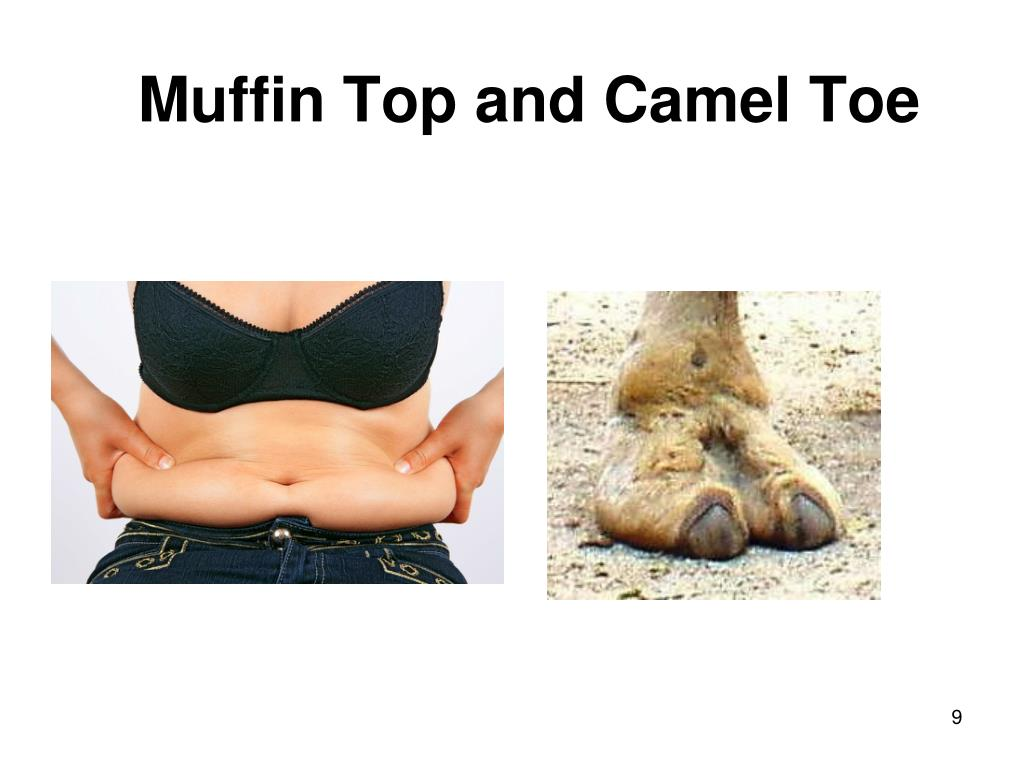 Muffin Top and Camel Toe