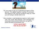 scenario plant sale