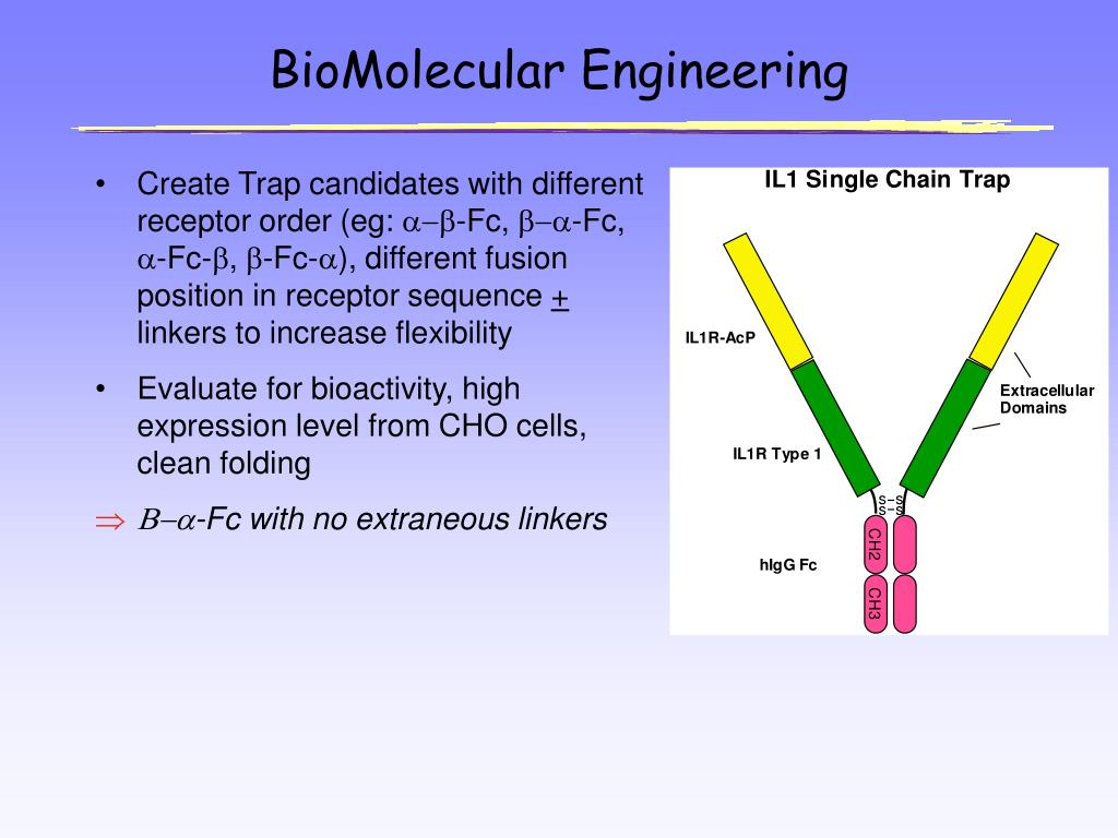 BioMolecular Engineering