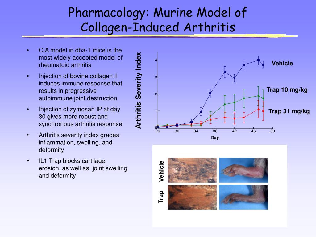 Pharmacology: Murine Model of