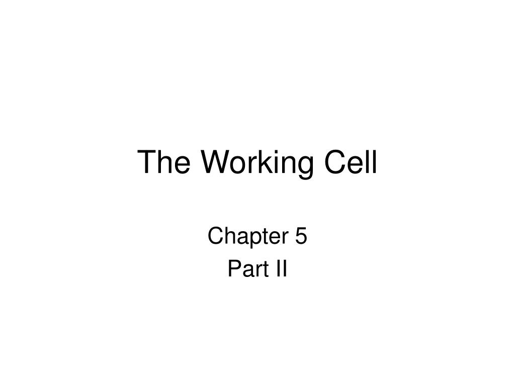 the working cell l.
