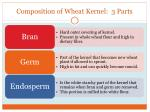 composition of wheat kernel 3 parts