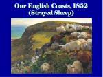 our english coasts 1852 strayed sheep5