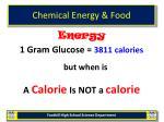 chemical energy food