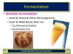fermentation14