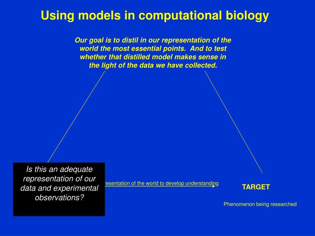 Using models in computational biology