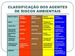 classifica o dos agentes de riscos ambientais