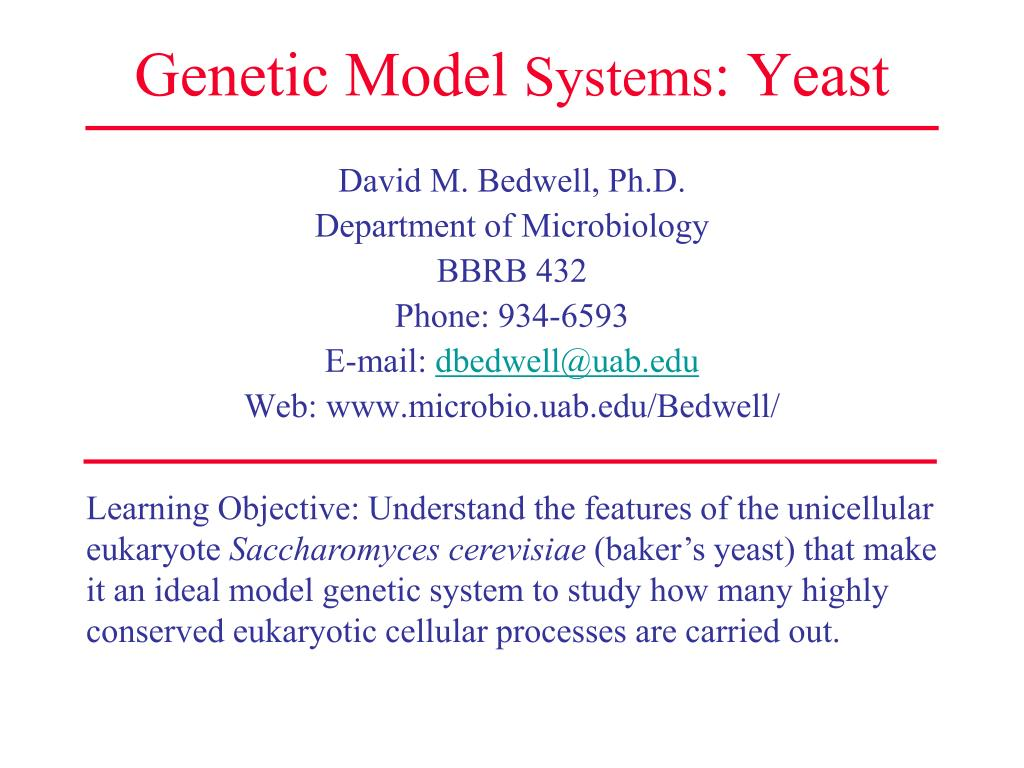 genetic model systems yeast l.