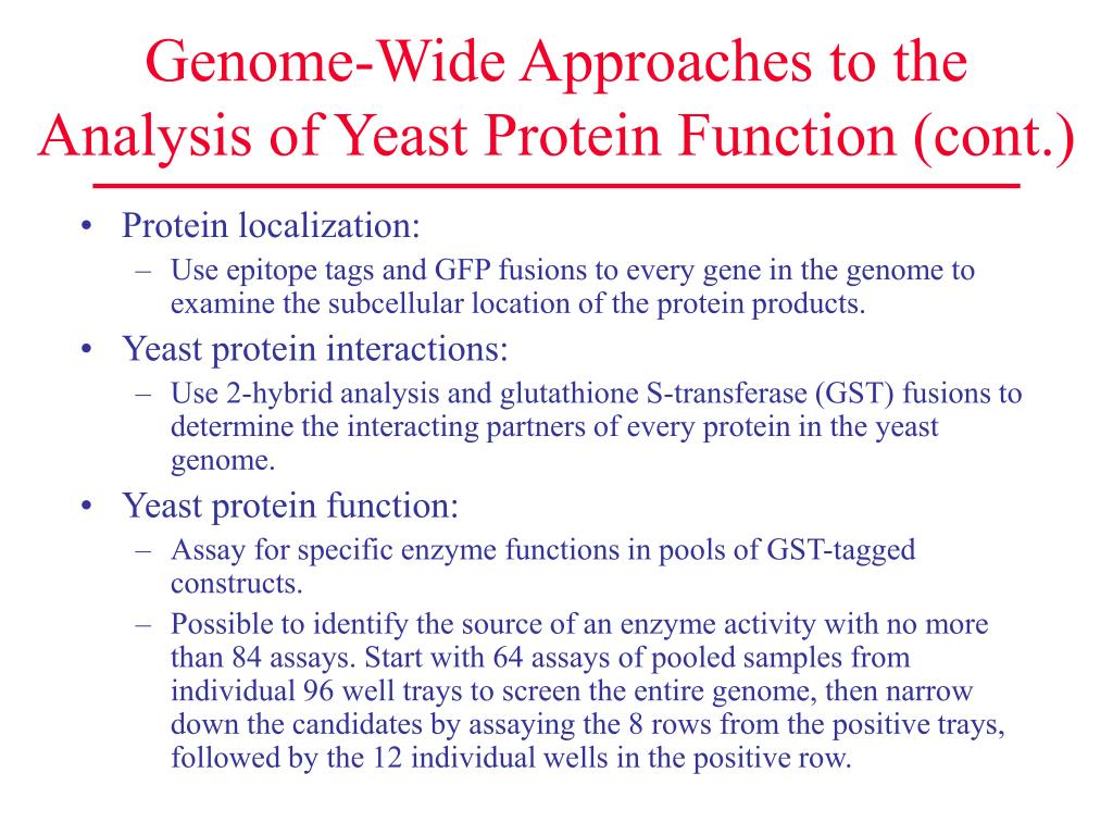Genome-Wide Approaches to the Analysis of Yeast Protein Function (cont.)
