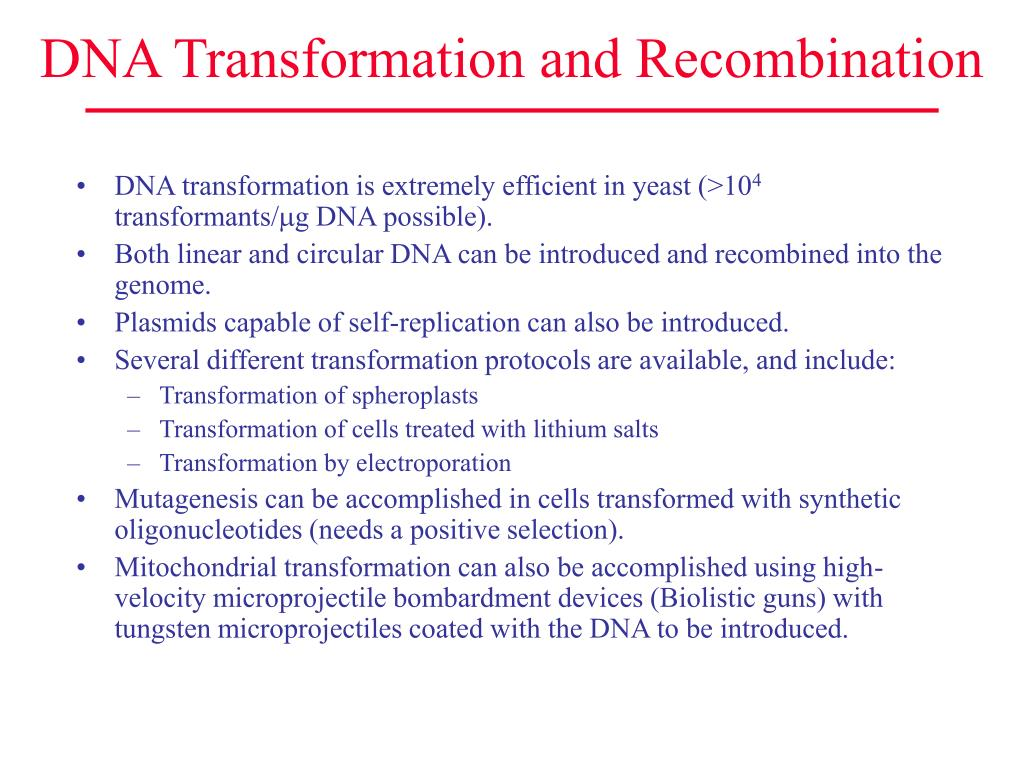 DNA Transformation and Recombination