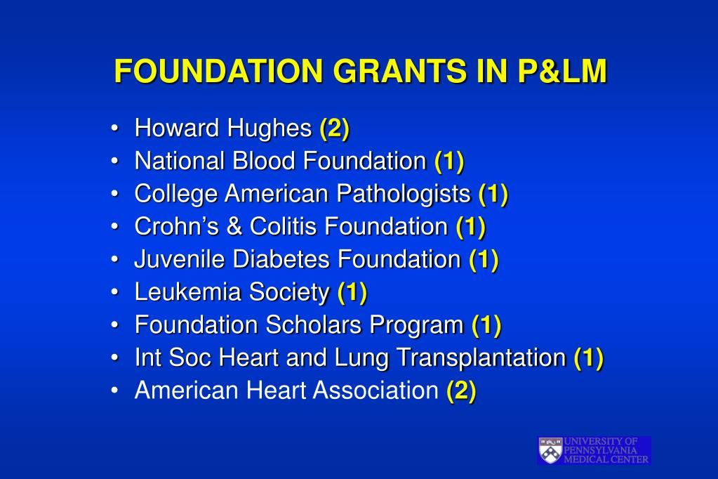 FOUNDATION GRANTS IN P&LM