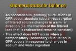 glomerulotubular balance