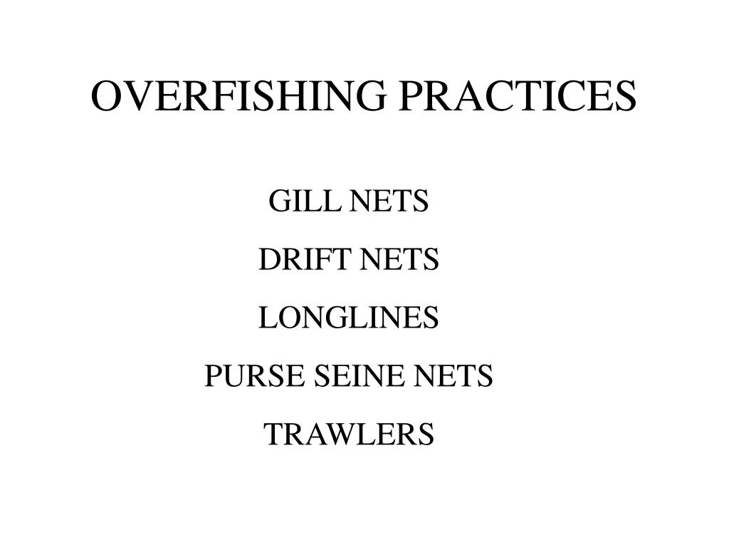 overfishing practices l.