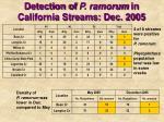 detection of p ramorum in california streams dec 2005