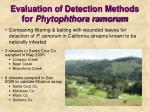 evaluation of detection methods for phytophthora ramorum