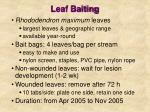 leaf baiting