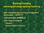 baiting feeding viewing photographing hunting