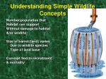 understanding simple wildlife concepts4