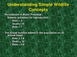 understanding simple wildlife concepts5