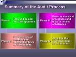 summary of the audit process