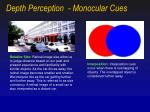 depth perception monocular cues