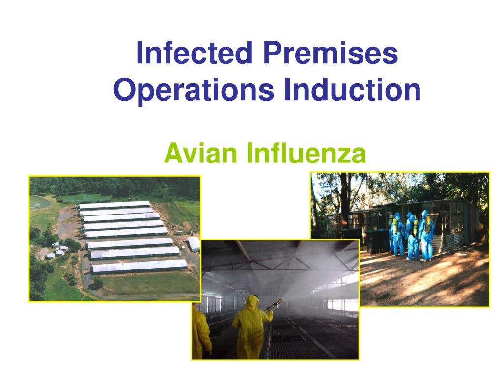 infected premises operations induction l.