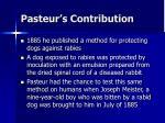 pasteur s contribution