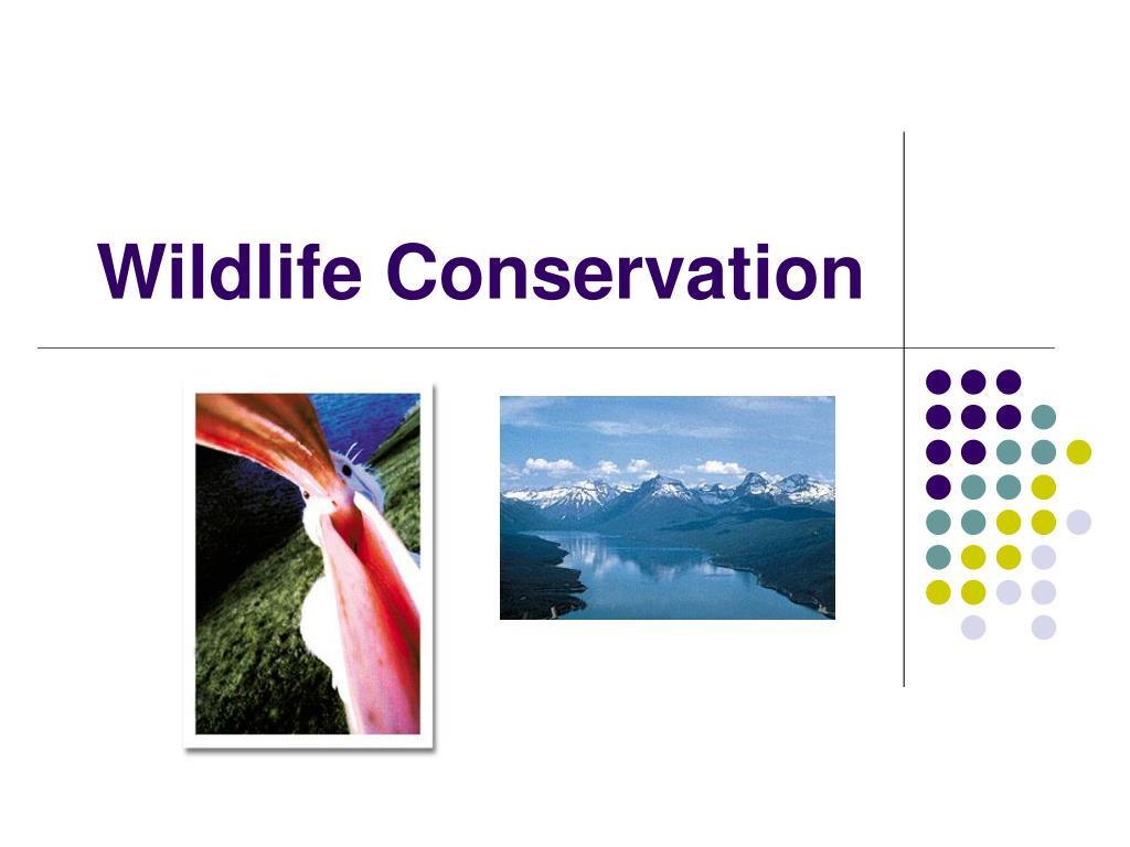 wildlife conservation l.