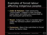 examples of forced labour affecting indigenous peoples10