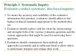 principle 1 systematic inquiry evaluators conduct systematic data based inquiries