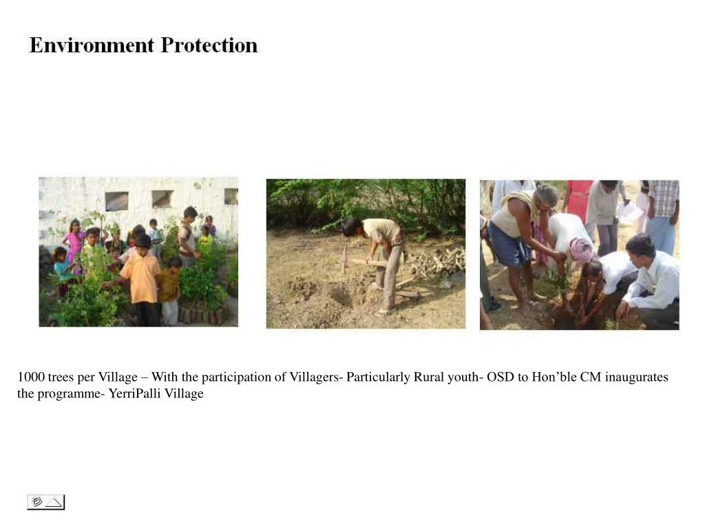 1000 trees per Village – With the participation of Villagers- Particularly Rural youth- OSD to Hon'ble CM inaugurates the programme- YerriPalli Village