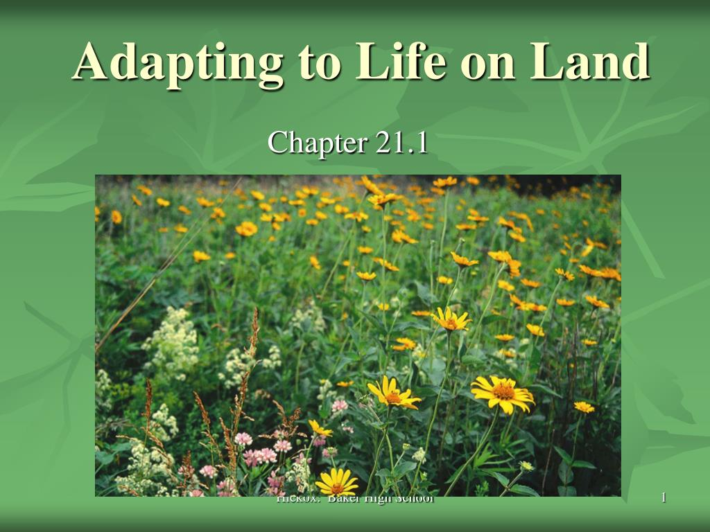 adapting to life on land l.