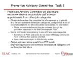 promotion advisory committee task 2