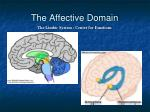 the affective domain21
