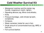 cold weather survival kit