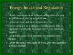energy intake and regulation