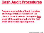 cash audit procedures27