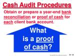 cash audit procedures30